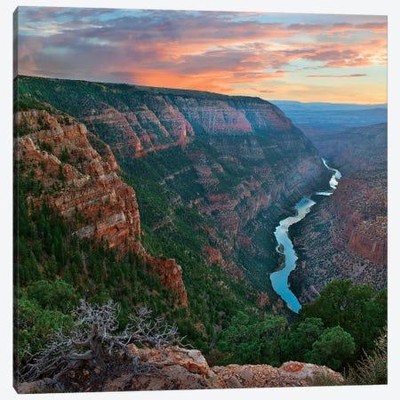 Whirlpool Canyon, Green River, Dinosaur Nm, Colorado Canvas Print #TFI1483} by Tim Fitzharris Art Print