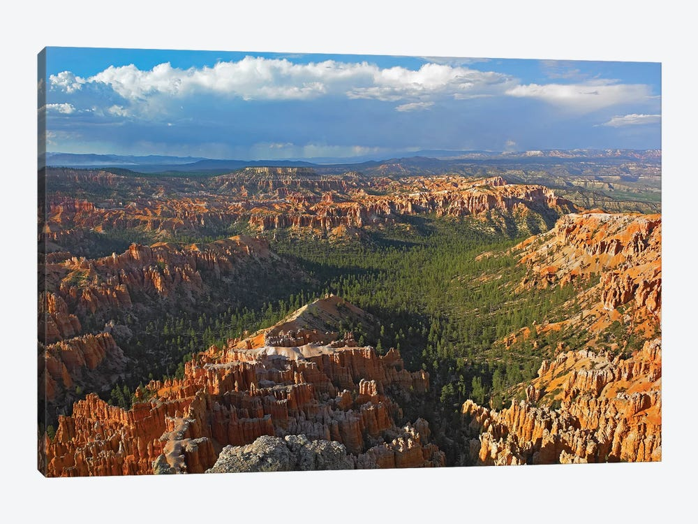 Bryce Canyon National Park Seen From Bryce Point, Utah I by Tim Fitzharris 1-piece Canvas Art Print