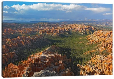 Bryce Canyon National Park Seen From Bryce Point, Utah I Canvas Art Print