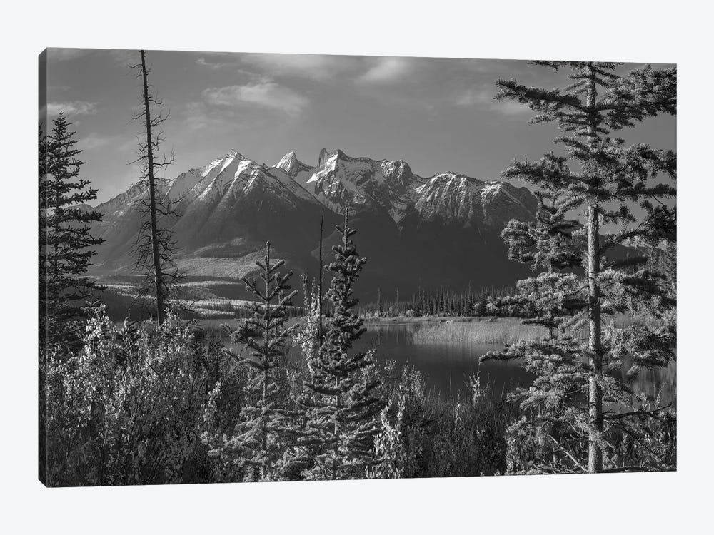 Athabasca River and Colin Range, Rocky Mountains, Jasper National Park, Alberta, Canada by Tim Fitzharris 1-piece Canvas Art