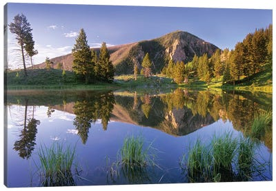 Bunsen Peak Reflected In Lake, Yellowstone National Park, Wyoming Canvas Art Print