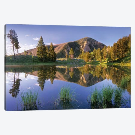 Bunsen Peak Reflected In Lake, Yellowstone National Park, Wyoming Canvas Print #TFI151} by Tim Fitzharris Canvas Artwork