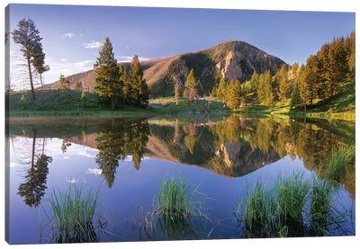 Bunsen Peak Reflected In Lake, Yellowstone National Park, Wyoming Canvas Art Print