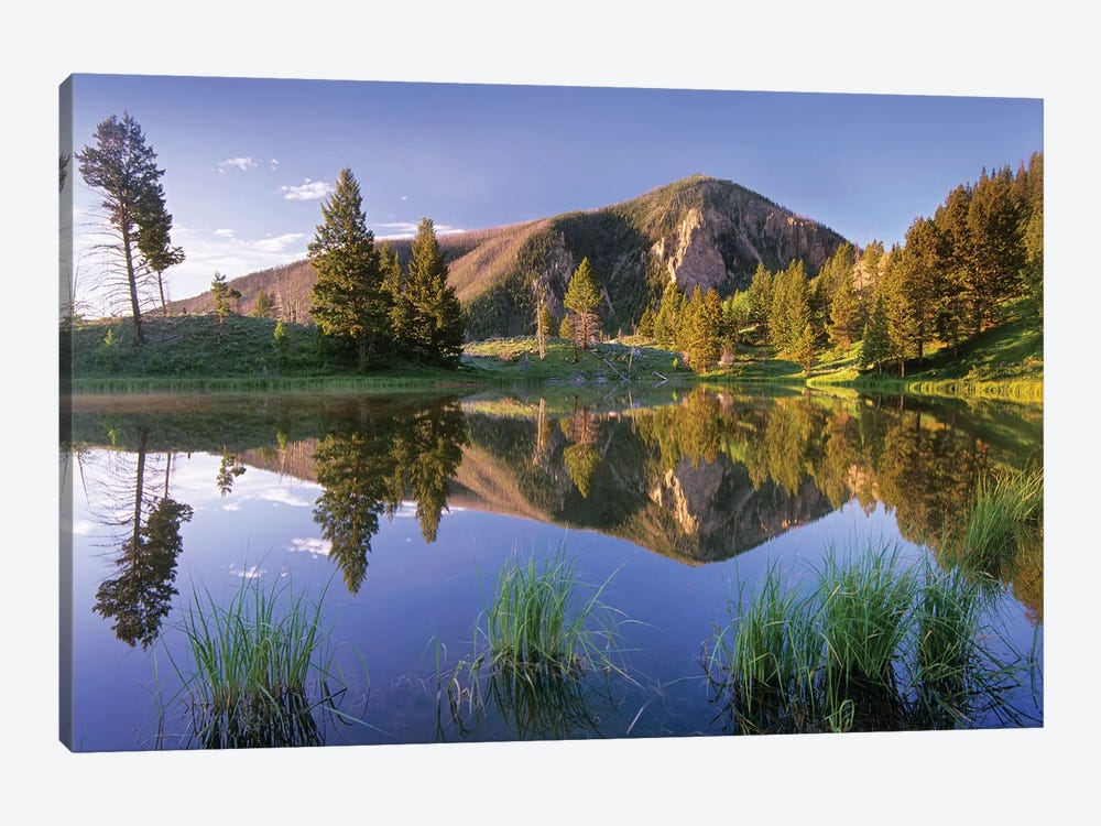 Bunsen Peak Reflected In Lake, Yellowstone National Park, Wyoming by Tim Fitzharris 1-piece Canvas Art Print