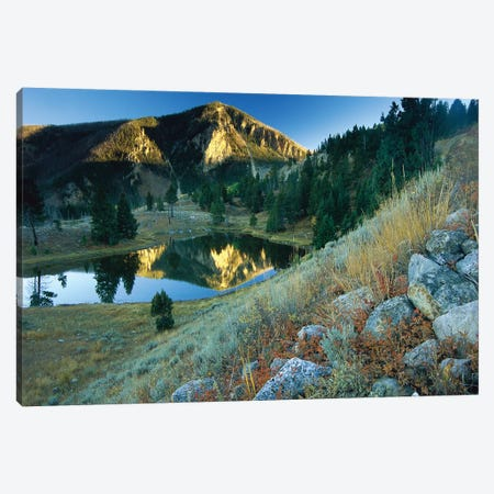 Bunsen Peak, An Ancient Volcano Cone, Reflected In Lake, Near Mammoth, Yellowstone National Park, Wyoming Canvas Print #TFI152} by Tim Fitzharris Canvas Artwork