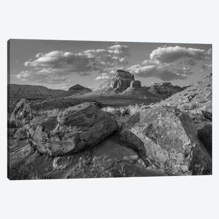 Boulders, Echo Canyon, Vermillion Cliffs National Monument, Arizona Canvas Print #TFI1539} by Tim Fitzharris Canvas Print