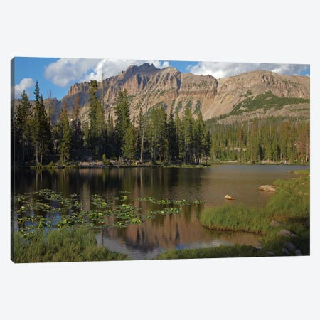 Butterfly Lake, Uinta Range, Utah Canvas Print #TFI153} by Tim Fitzharris Canvas Art