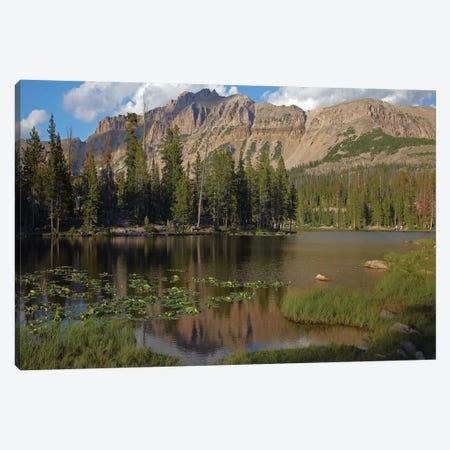 Butterfly Lake, Uinta Range, Utah Canvas Print #TFI153} by Tim Fitzharris Canvas Art