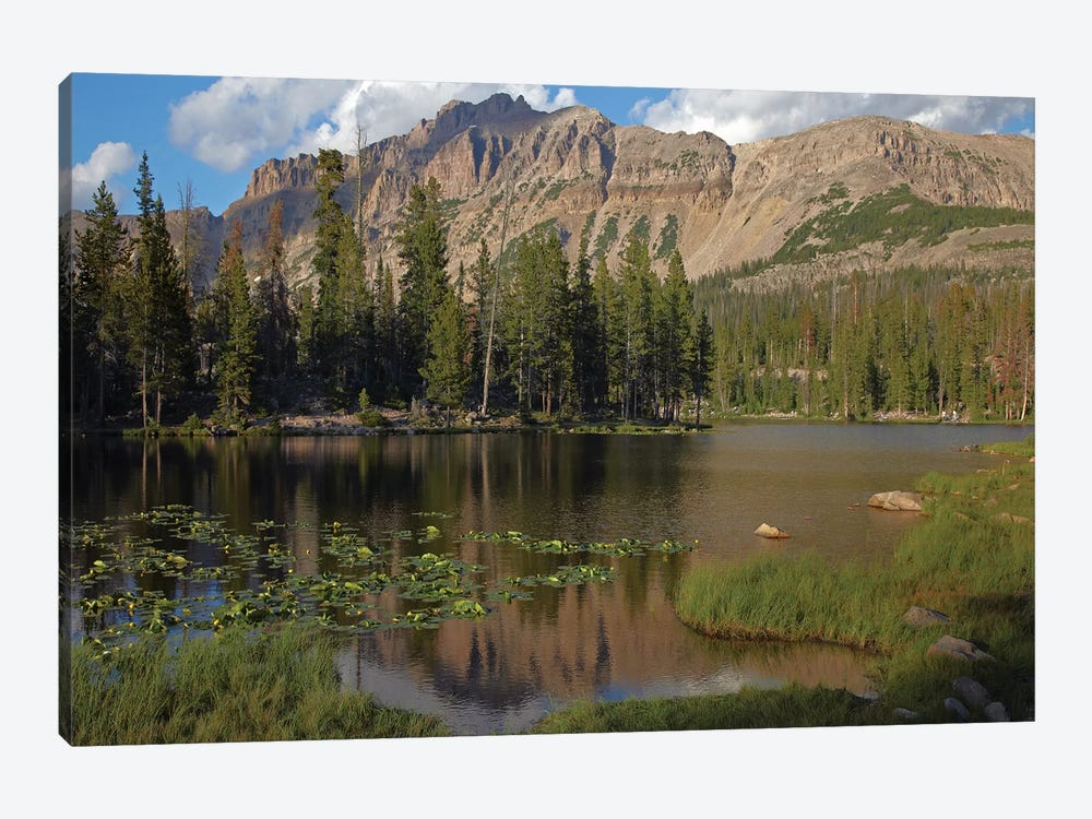Butterfly Lake, Uinta Range, Utah by Tim Fitzharris 1-piece Canvas Print