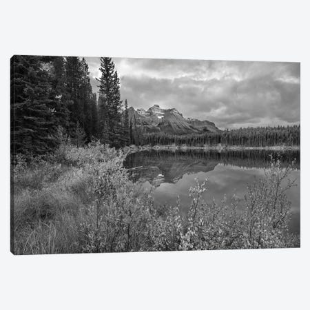 Bow Range at Herbert Lake, Rocky Mountains, Banff National Park, Alberta, Canada Canvas Print #TFI1541} by Tim Fitzharris Canvas Wall Art
