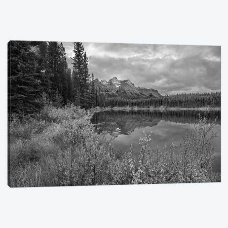 Bow Range at Herbert Lake, Rocky Mountains, Banff National Park, Alberta, Canada Canvas Print #TFI1541} by Tim Fitzharris Canvas Wall Art