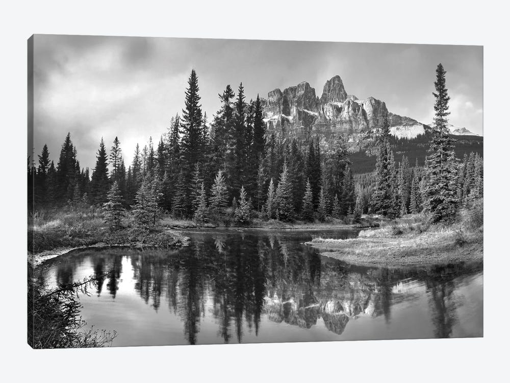 Castle Mountain and boreal forest reflected in lake, Alberta, Canada by Tim Fitzharris 1-piece Canvas Art