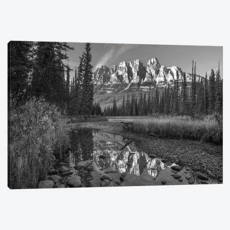 Castle Mountain reflected in Athabasca River, Banff National Park, Alberta, Canada Canvas Print #TFI1564} by Tim Fitzharris Canvas Art Print