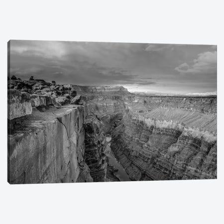 Colorado River from Toroweap Overlook, Grand Canyon National Park, Arizona Canvas Print #TFI1579} by Tim Fitzharris Art Print