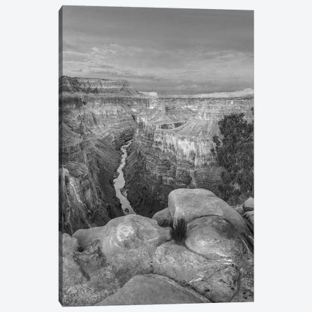 Colorado River from Toroweap Overlook,Grand Canyon, Arizona Canvas Print #TFI1580} by Tim Fitzharris Canvas Art
