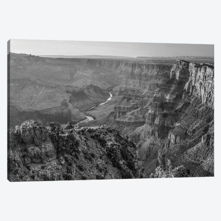 Comanche Point from Desert View Overlook, South Rim, Grand Canyon National Park, Arizona, USA. Canvas Print #TFI1582} by Tim Fitzharris Canvas Artwork
