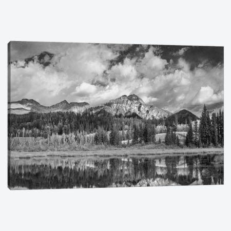 Cottonwood Slough and Pyramid Mountain, Jasper National Park, Alberta, Canada Canvas Print #TFI1585} by Tim Fitzharris Canvas Art Print