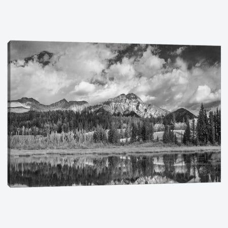 Cottonwood Slough and Pyramid Mountain, Jasper National Park, Alberta, Canada Canvas Print #TFI1585} by Tim Fitzharris Canvas Art Print