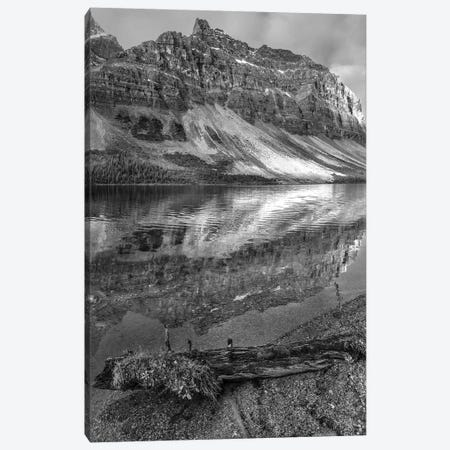 Crowfoot Mountains and Bow Lake, Icefields Parkway, Rocky Mountains, Alberta, Canada Canvas Print #TFI1587} by Tim Fitzharris Art Print