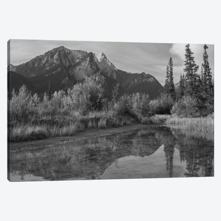 De Smet Range, Rocky Mountains, Jasper National Park, Alberta, Canada Canvas Print #TFI1589} by Tim Fitzharris Canvas Art