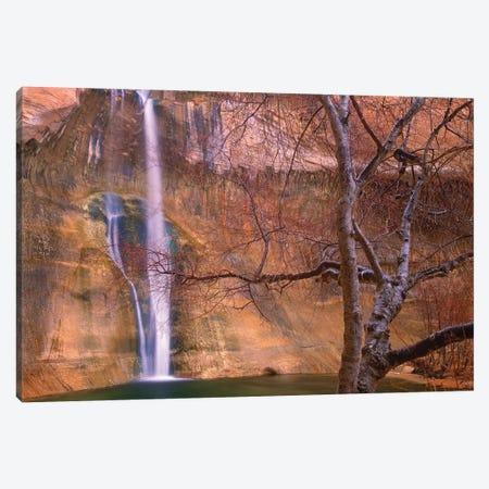 Calf Creek Falls Cascading Down Sandstone Cliff With Desert Varnish, Escalante National Monument, Utah Canvas Print #TFI158} by Tim Fitzharris Canvas Artwork