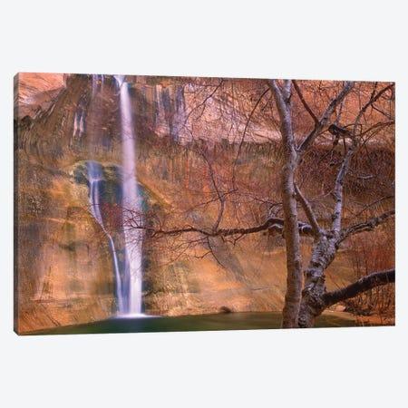 Calf Creek Falls Cascading Down Sandstone Cliff With Desert Varnish, Escalante National Monument, Utah Canvas Print #TFI158} by Tim Fitzharris Canvas Artwork