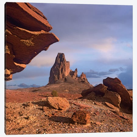Agathla Peak, The Basalt Core Of An Extinct Volcano, Monument Valley, Arizona 3-Piece Canvas #TFI15} by Tim Fitzharris Canvas Wall Art