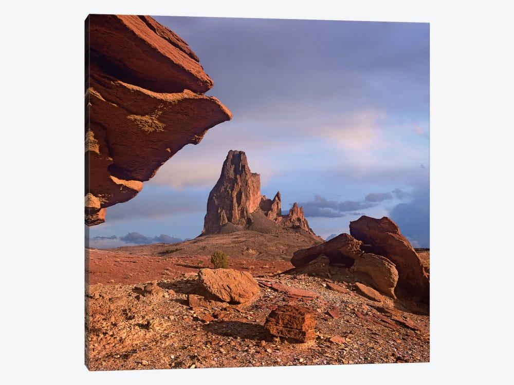 Agathla Peak, The Basalt Core Of An Extinct Volcano, Monument Valley, Arizona by Tim Fitzharris 1-piece Canvas Artwork