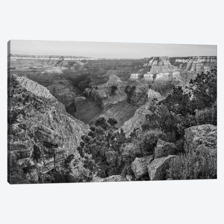 Grand Canyon from Desert View Overlook, South Rim, Grand Canyon  Canvas Print #TFI1606} by Tim Fitzharris Canvas Wall Art