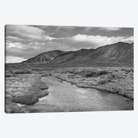Hart River flowing over tundra beneath the Ogilvie Mountains, Yukon Territory, Canada Canvas Print #TFI1639} by Tim Fitzharris Canvas Wall Art