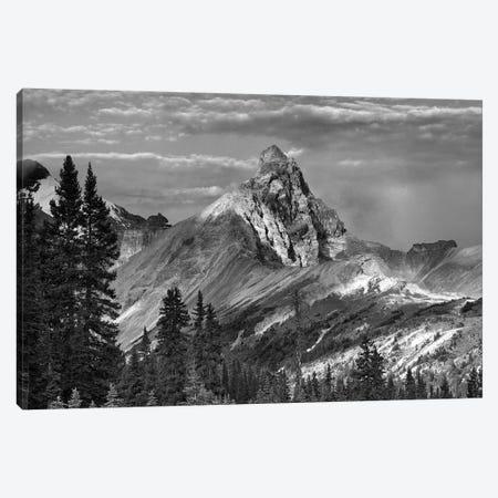 Hilda Peak, Icefields Parkway, Banff National Park, Alberta, Canada Canvas Print #TFI1641} by Tim Fitzharris Canvas Art Print