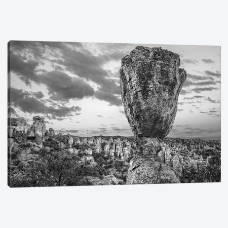 Hoodoos in the Grotto, Echo Canyon, Chiricahua National Monument, Arizona Canvas Print #TFI1642} by Tim Fitzharris Canvas Art Print