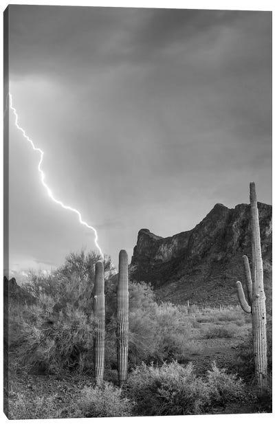 Lightning over Picacho Peak, Picacho State Park, Arizona Canvas Art Print