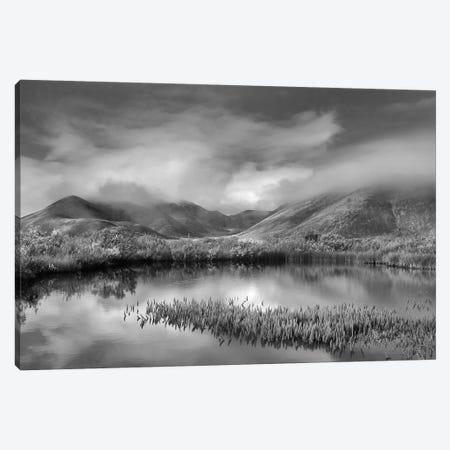 Mist over mountains near pond in autumn, Ogilvie Mountains, Tombstone Territorial Park, Yukon, Canada Canvas Print #TFI1665} by Tim Fitzharris Canvas Artwork