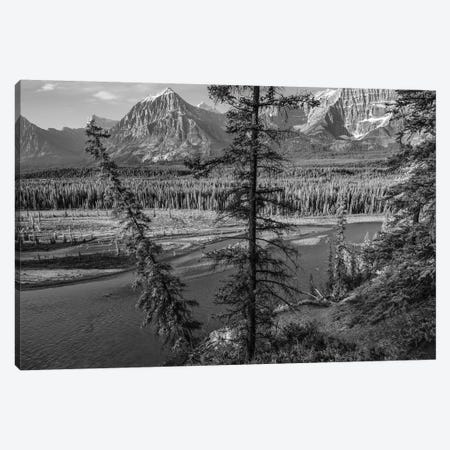 Mount Christie and Brussels Peak from Athabasca River, Jasper National Park, Alberta, Canada Canvas Print #TFI1670} by Tim Fitzharris Canvas Artwork