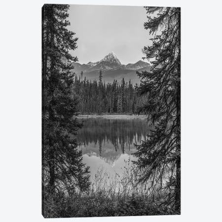 Mount Edith Cavell, Jasper National Park, Alberta, Canada Canvas Print #TFI1673} by Tim Fitzharris Canvas Artwork