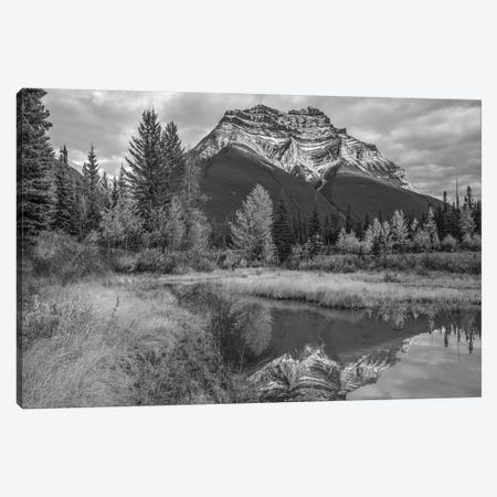 Mount Kerkeslin, Jasper National Park, Alberta, Canada Canvas Print #TFI1675} by Tim Fitzharris Art Print