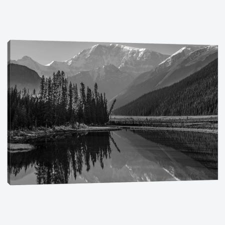 Mount Kitchener reflected in Athabasca River, Icefields Parkway, Alberta, Canada Canvas Print #TFI1676} by Tim Fitzharris Canvas Print