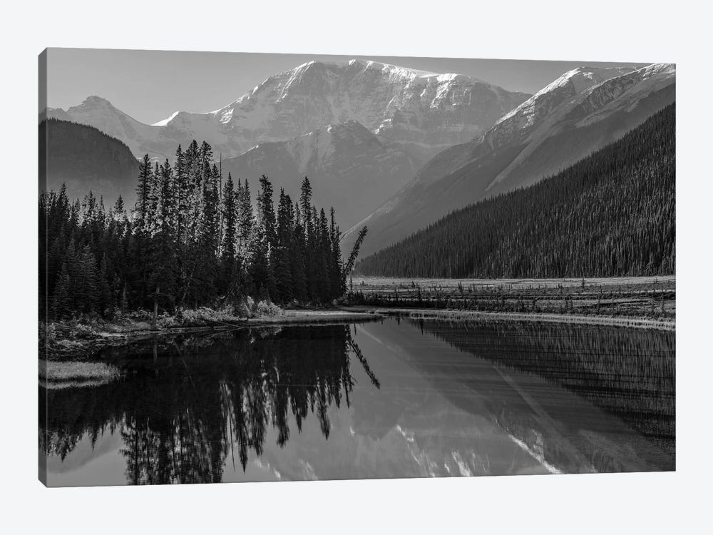 Mount Kitchener reflected in Athabasca River, Icefields Parkway, Alberta, Canada by Tim Fitzharris 1-piece Canvas Art