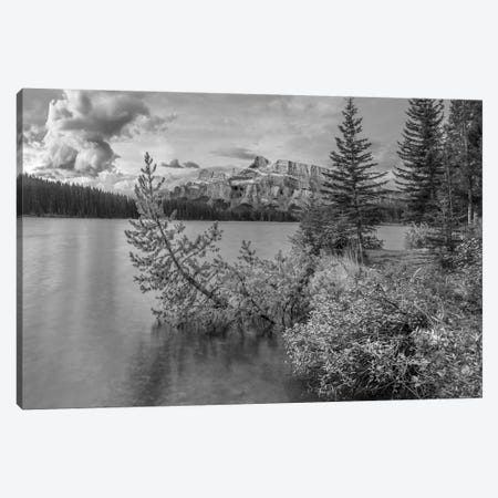 Mount Rundle from Two Jack Lake, Banff National Park, Alberta, Canada Canvas Print #TFI1678} by Tim Fitzharris Canvas Wall Art