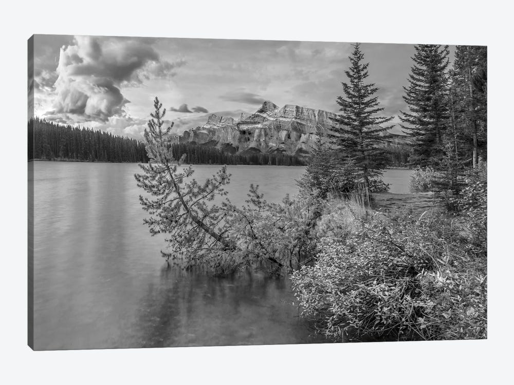 Mount Rundle from Two Jack Lake, Banff National Park, Alberta, Canada by Tim Fitzharris 1-piece Canvas Artwork