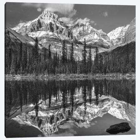 Mountains reflected in lake, Mount Huber, Yoho National Park, British Columbia, Canada Canvas Print #TFI1685} by Tim Fitzharris Canvas Artwork