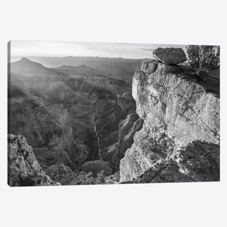 North Rim, Grand Canyon, Arizona Canvas Print #TFI1690} by Tim Fitzharris Canvas Wall Art
