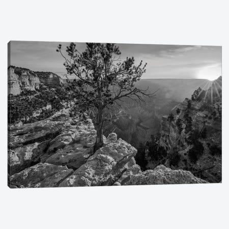 North Rim, Grand Canyon, Arizona Canvas Print #TFI1691} by Tim Fitzharris Canvas Art