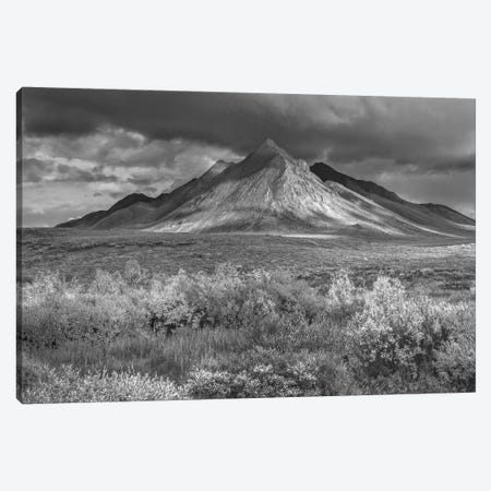 Ogilvie Mountains, Tombstone Territorial Park, Yukon, Canada 3-Piece Canvas #TFI1700} by Tim Fitzharris Canvas Wall Art