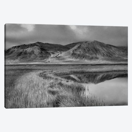 Ogilvie Mountains, Tombstone Territorial Park, Yukon, Canada Canvas Print #TFI1701} by Tim Fitzharris Canvas Wall Art