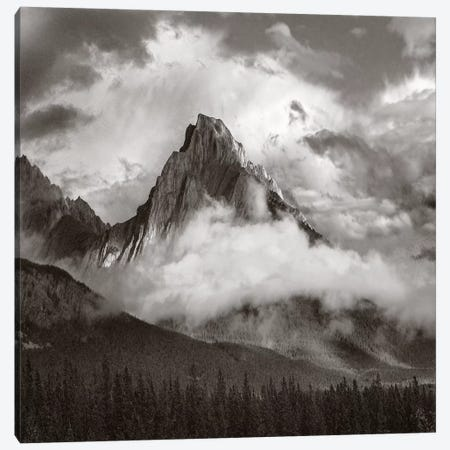 Opal Range surrounded by fog, Kananaskis Country, Alberta, Canada 3-Piece Canvas #TFI1702} by Tim Fitzharris Canvas Wall Art