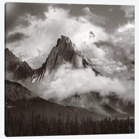 Opal Range surrounded by fog, Kananaskis Country, Alberta, Canada Canvas Print #TFI1702} by Tim Fitzharris Canvas Wall Art