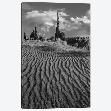 otem Pole and Yei Bi Chei with sand dunes and shrubs, Monument Valley, Arizona and Utah border Canvas Print #TFI1708} by Tim Fitzharris Canvas Artwork