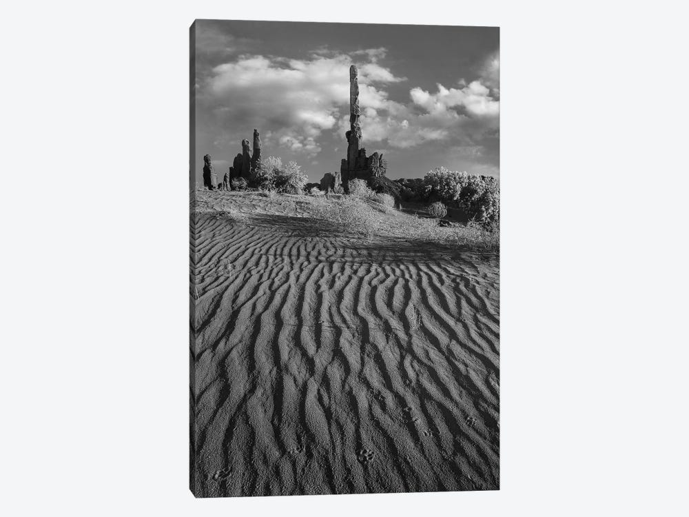 otem Pole and Yei Bi Chei with sand dunes and shrubs, Monument Valley, Arizona and Utah border by Tim Fitzharris 1-piece Canvas Artwork